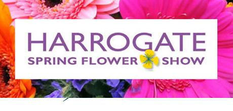 Harrogate Spring Flower Show
